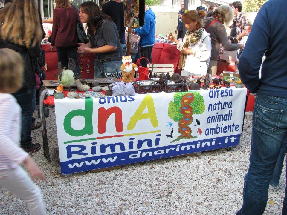 Tavolo di sostegno per gli animali della provincia di Rimini e non solo.